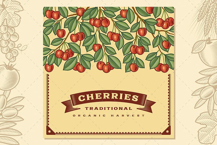 Thumbnail for Retro Cherry Harvest Card