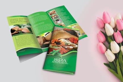 Spa Natural Brochure Trifold Vol.1