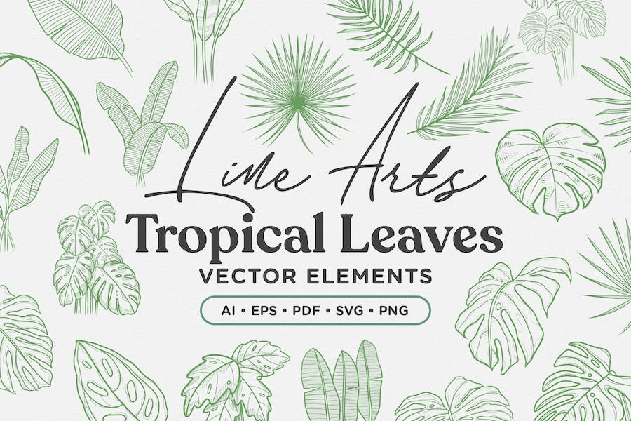 Tropical Leaves Lineart Vector Elements