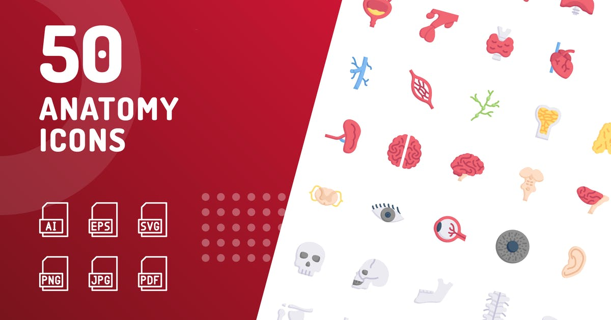 Download Anatomy Flat Icons by kerismaker