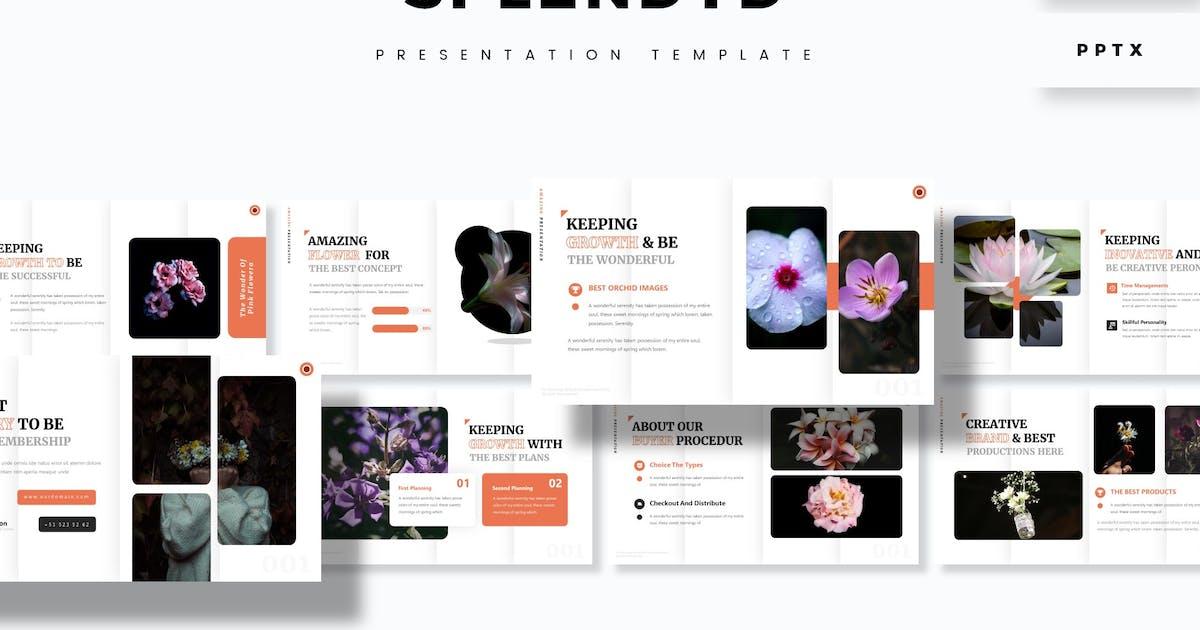 Download Splendyd - Presentation Template by aqrstudio