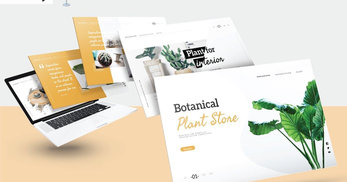 Download BOTANICAL PLANT STORE - Keynote V340 by Shafura
