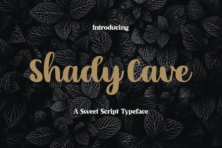 Thumbnail for Shady Cave - Script Font