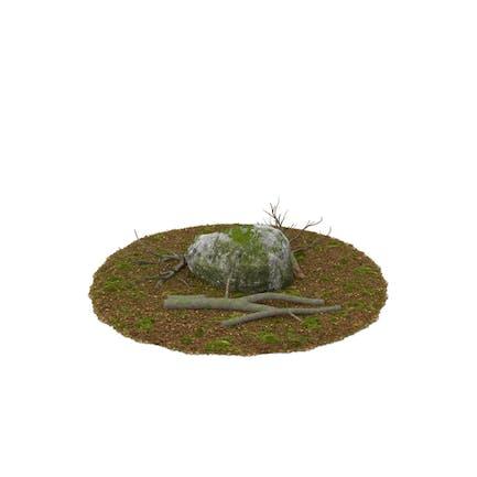 Felsbrocken mit Baumstämmen