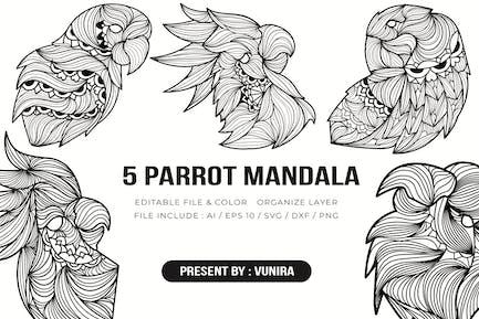 5 Papagei Mandala   Design Illustration