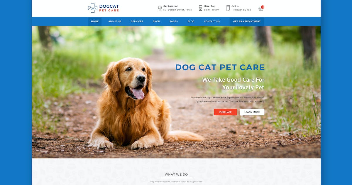 Download Pet Care - Veterinary HTML Template by PremiumLayers