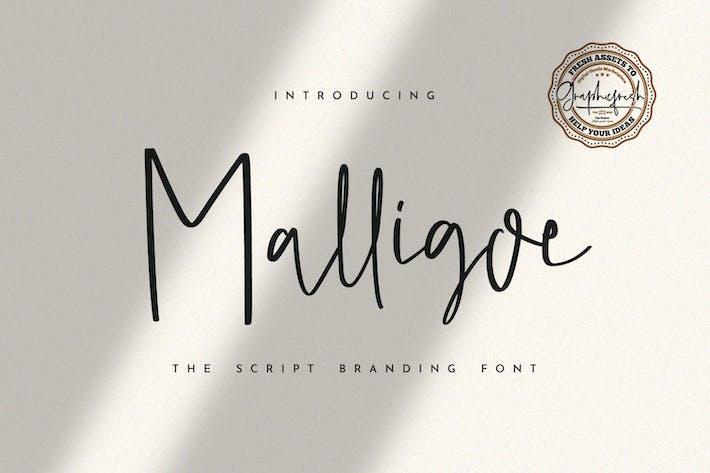 Thumbnail for Malligoe - The Script Branding Font