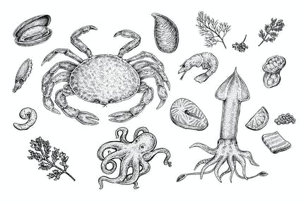 MeeresfrüchteSammlung