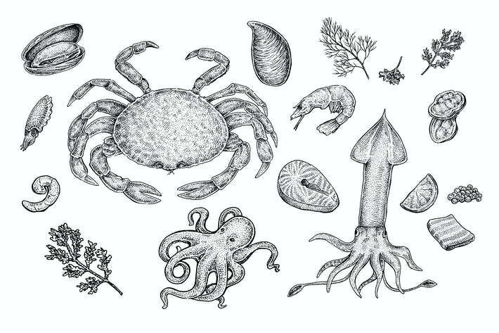 Thumbnail for Seafood Collection