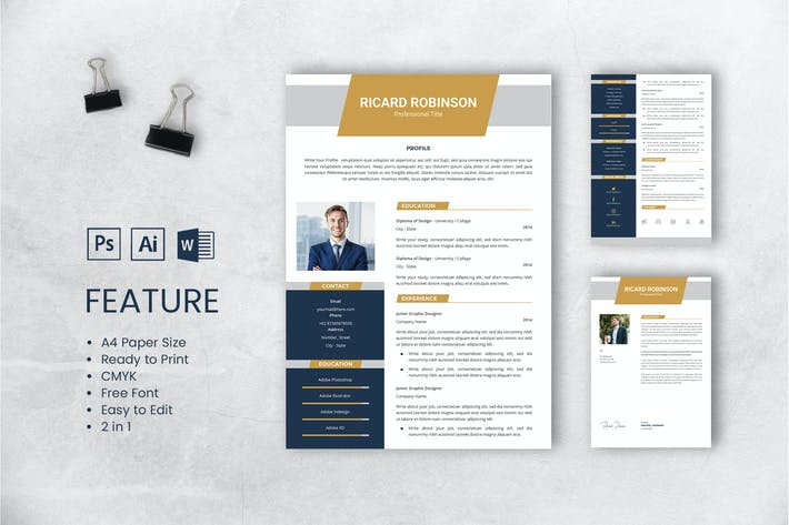 Thumbnail for Professional CV And Resume Template Robinson
