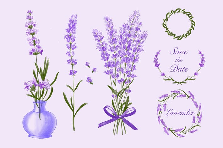 Thumbnail for Lavender Decoration
