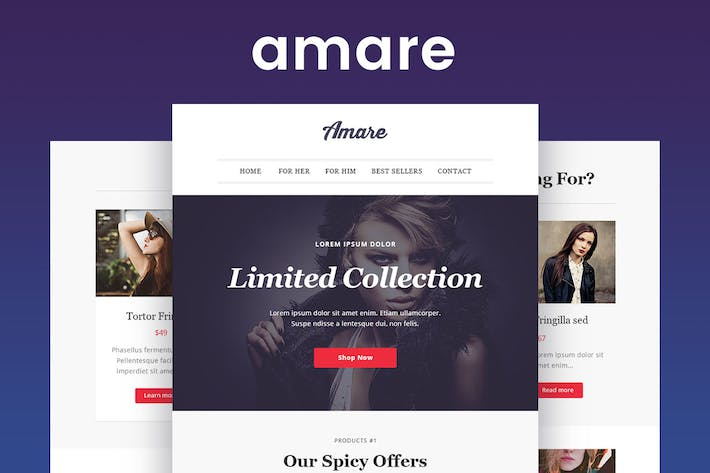 Thumbnail for Amare - Responsive Email & Newsletter Template
