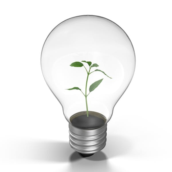 Thumbnail for Plant in a Light Bulb