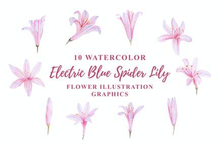 10 Watercolor Electric Blue Spider Lily Flower