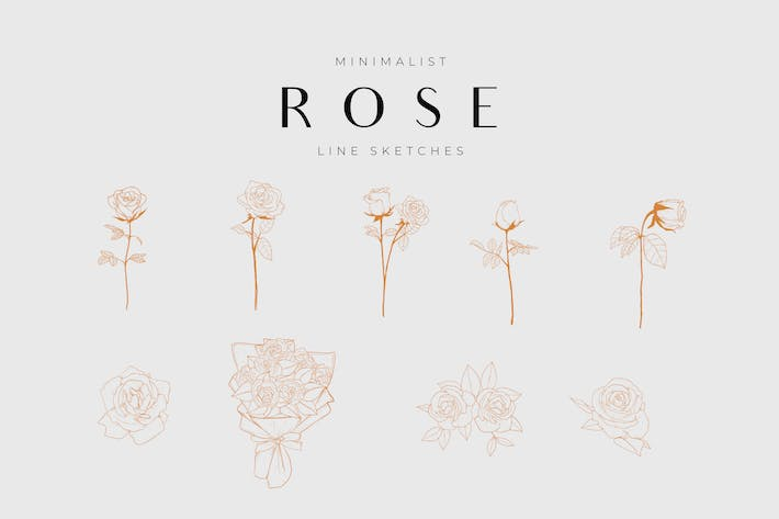 Thumbnail for Minimalist Botanical Line Sketches