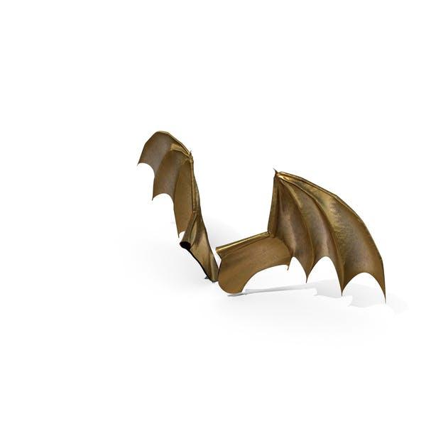 Goldene Drachenflügel
