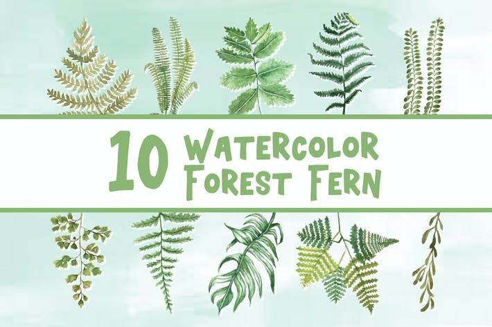 Thumbnail for 10 Watercolor Forest Fern Illustration Graphics