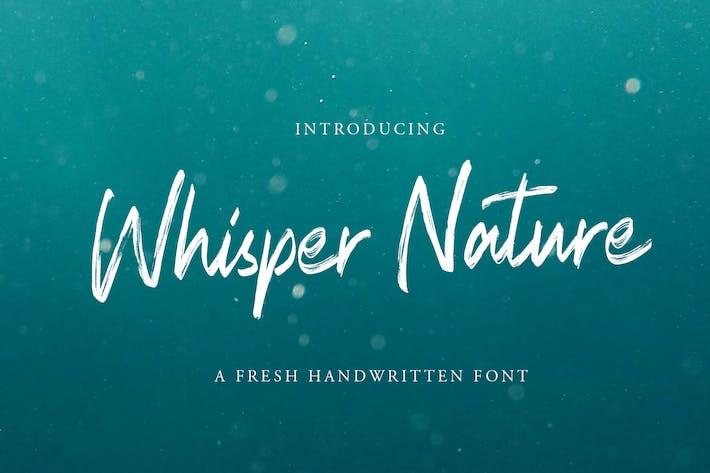 Police de script de pinceau Whisper Nature