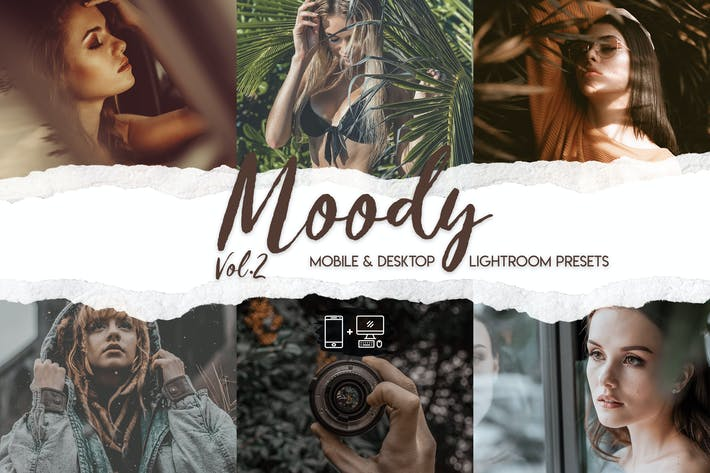 Moody Vol. 2 - 15 Premium Lightroom Presets