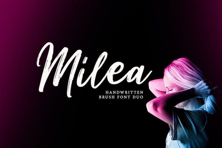 Thumbnail for Milea - Handwritten Brush Font Duo