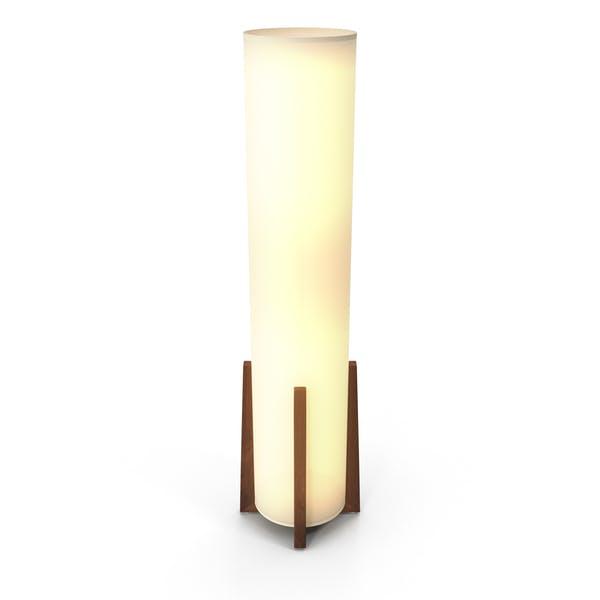 Contemporary Floor Light