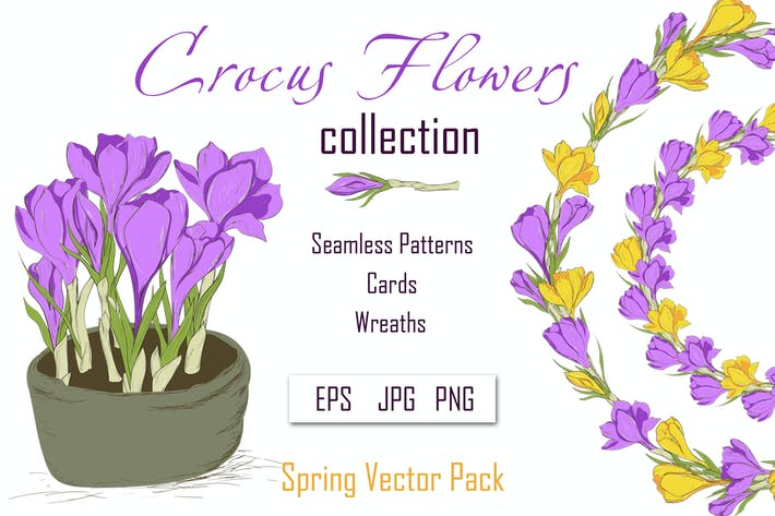Cover Image For Crocus. Spring Flowers collection