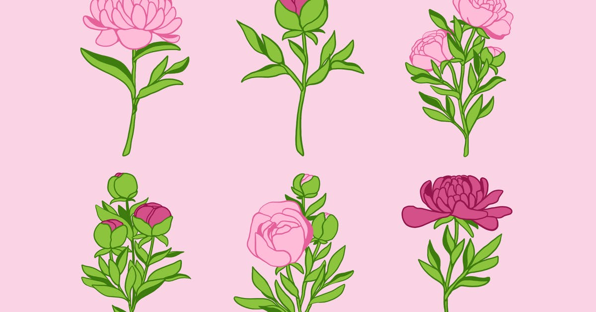 Download Peony Clipart by Jumsoft