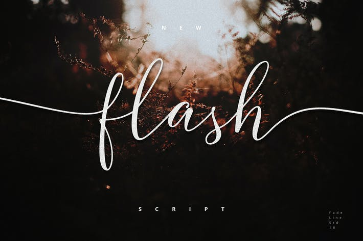 Thumbnail for Flash Script