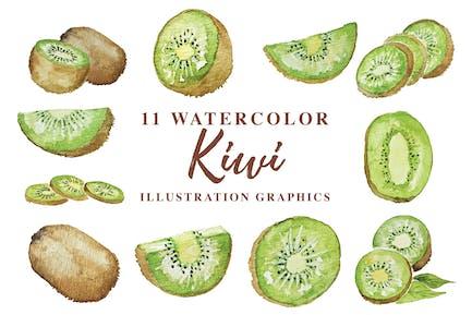 11 Acuarela Kiwi Ilustración Gráficos