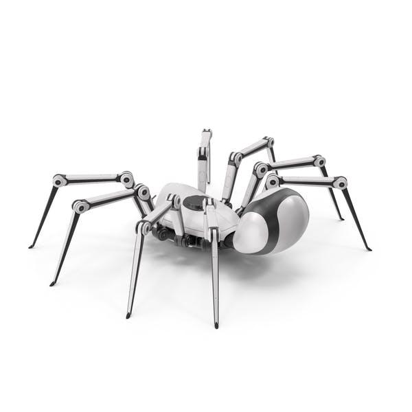 Robot Spider White Black