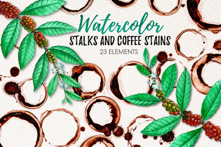 Cover Image For Watercolor Coffee Stains and Stalks