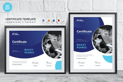 Professional Certificate Template Vol.6