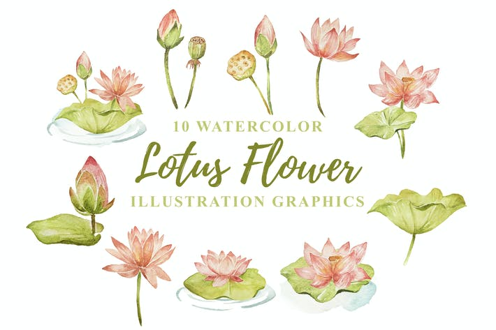 Thumbnail for 10 Watercolor Lotus Flower Illustration Graphics
