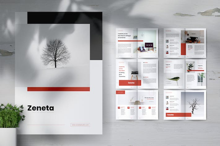 Thumbnail for ZENETA Creative Agency Company Profile Brochures