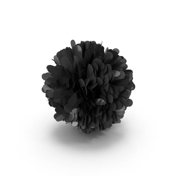 Thumbnail for Black Pom Pom