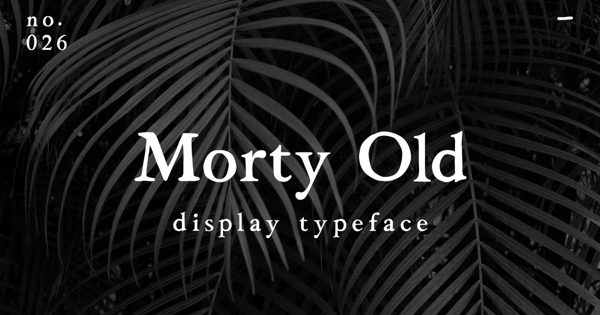 Download Morty Old by MartypeCo