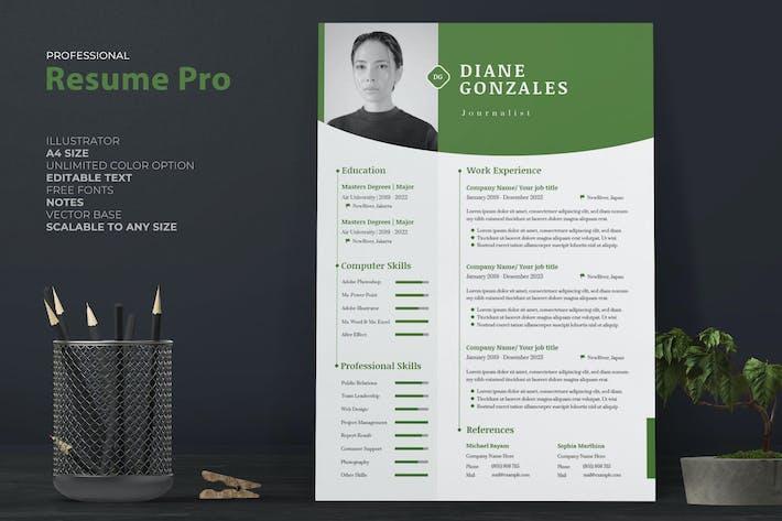 Thumbnail for Professional Resume / CV