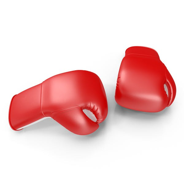 Thumbnail for Two Boxing Gloves