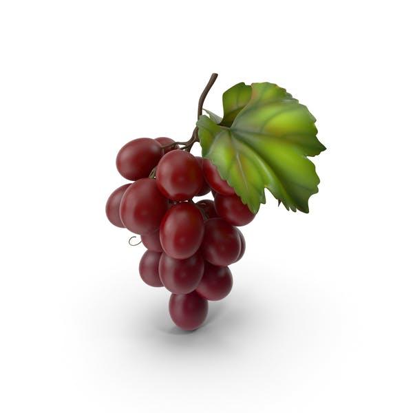 Bündel frischer roter Trauben