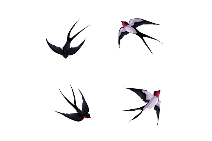 Thumbnail for Four Swallows