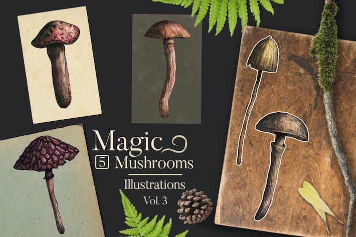 Thumbnail for Magic Mushrooms Illustrations 3
