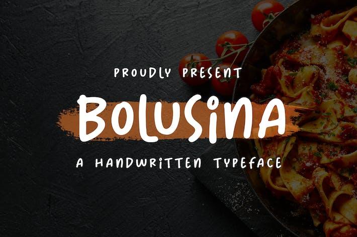 Thumbnail for Bolusina