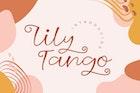 Lily Tango - Display | Script | Logo Font