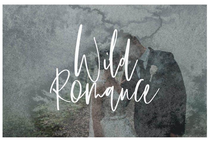 Thumbnail for Wild Romance