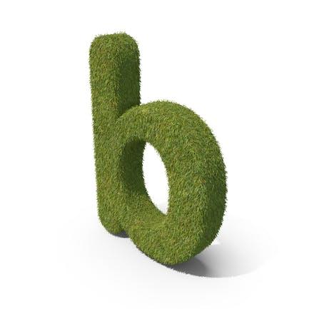 Grass Kleinbuchstabe B