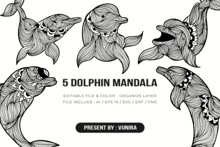 Thumbnail for 5 Delphin Mandala | Design Illustration