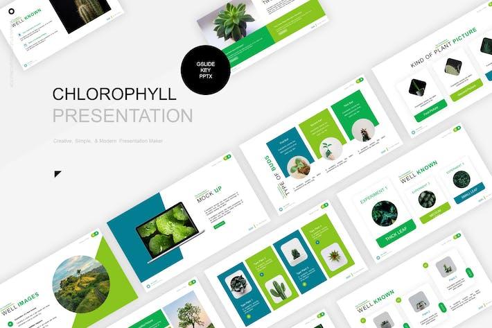 Thumbnail for Шаблон представления хлорофилла
