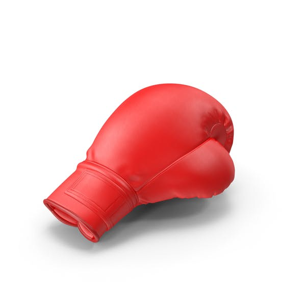 Thumbnail for Boxing Glove