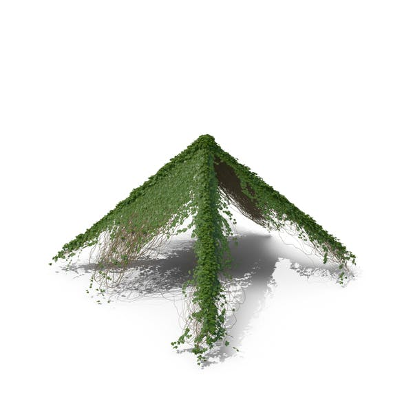 Ivy Pyramid
