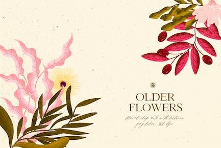 Ältere Blumen